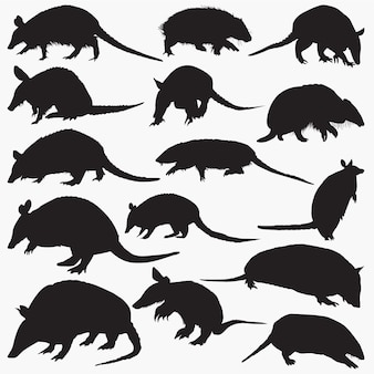 Armadillos silhouettes