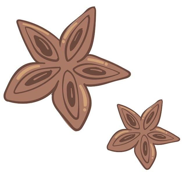 베이킹 및 요리 요리를 위한 아로마 아니스 향신료. 별의 형태로 성분의 고립 된 아이콘입니다. 향기로운 조미료와 음식, 요리법 및 이국적인 향료, 플랫 벡터