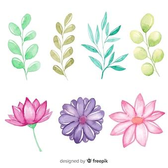 植物と葉の配置