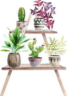 Arrangement with handpainted watercolor houseplants