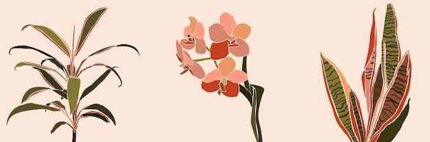 最小限の流行のスタイルでアートコラージュ観葉植物の葉と花。ピンクの背景に現代的なシンプルな抽象的なスタイルの蘭、サンセベリア、蘭の植物のシルエット。ベクター