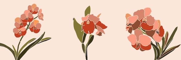 최소한의 트렌디한 스타일의 아트 콜라주 난초 꽃. 분홍색 배경에 현대적인 단순한 추상 스타일의 난초 식물의 실루엣. 벡터 일러스트 레이 션 티셔츠 인쇄, 카드, 포스터