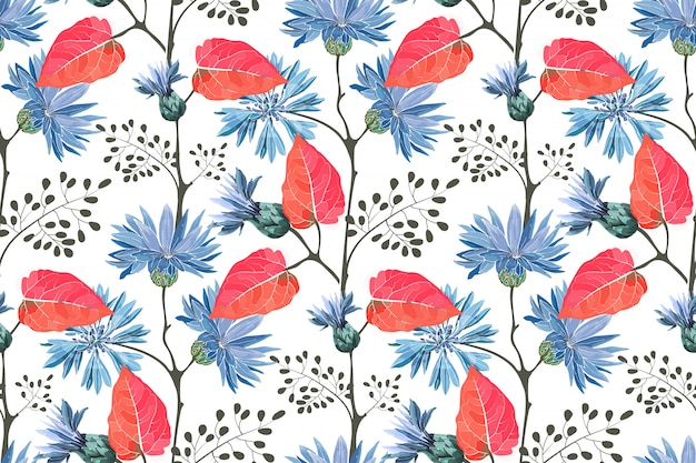 Art floral seamless pattern. blue flowering cornflower, centaurea  flowers with buds, stems, twigs, red leaves isolated on white background.