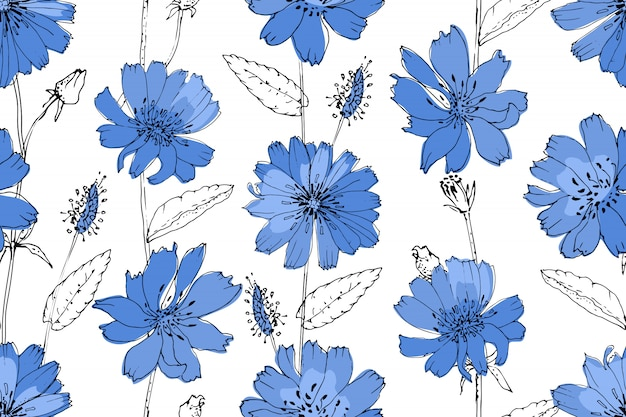 Art floral vector seamless pattern. blue succory chicory