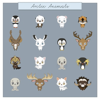 Artic animals collection