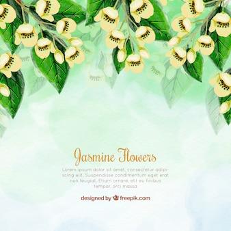 Artistic bakcground with watercolor jasmine