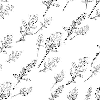 Arugula seamless pattern arugula leaves on a white background spicy and aromatic italian seasoning h...