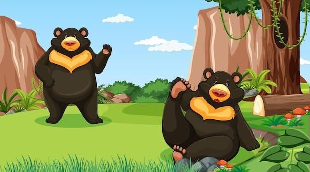 Orso nero asiatico o orso lunare nella scena della foresta o della foresta pluviale