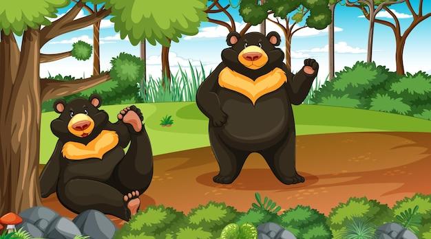 많은 나무가 있는 숲이나 열대 우림 장면에서 아시아 흑곰 또는 달곰