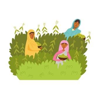 아시아 여성들은 완두콩 녹두를 수확합니다. 소녀들은 녹색 덤불에서 야채를 수확하고 있습니다. 농업 생산. 현대 벡터 일러스트 레이 션