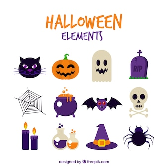 Assortment of halloween celebration