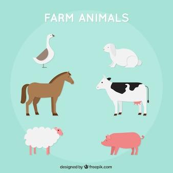 평면 디자인의 농장 동물의 구색