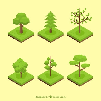Assortment of green trees in isometric style