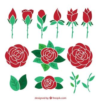 손으로 그린 빨간 장미의 구색