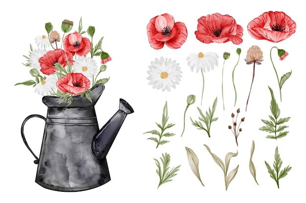Assortment of watercolor leaves with flower red poppy