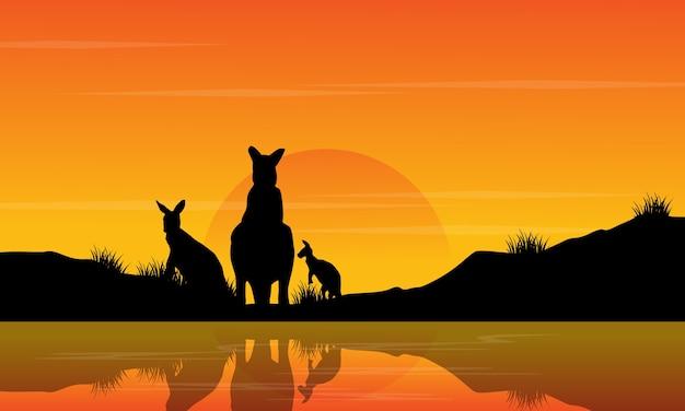 日没のカンガルーの風景のシルエットで
