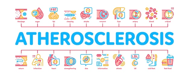 Atherosclerosis vessel minimal infographic web banner vector. healthy and unhealthy artery, fat and cholesterol, diabetes and atherosclerosis disease color illustration