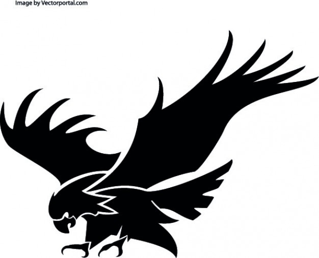 Attacking eagle