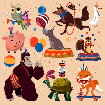 面白いトリックで設定された魅力的なサーカスの動物