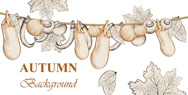 Atumn harvest. eggplant, tomatoes and onion vegetables vector background. line art hand drawn graphic style illustrations