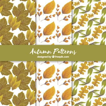 Atumn pattern collection