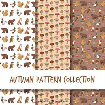 動物とキノコを使ったatumnパターン