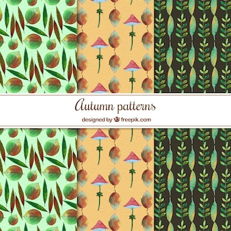 Atumnal patterns with watercolor style
