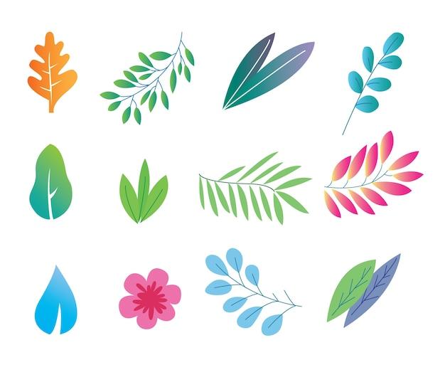 カラフルなグラデーション葉の茂みと花の秋のatutmn