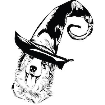 ハロウィーンの魔女の帽子のオーストラリアンシェパード犬