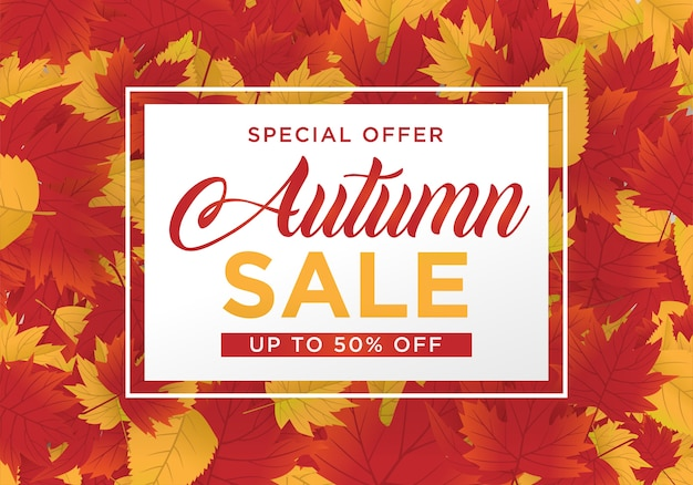Autmn販売の背景のテンプレートと楓の葉