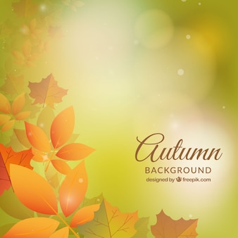 Autum background with realistic fallen leaves