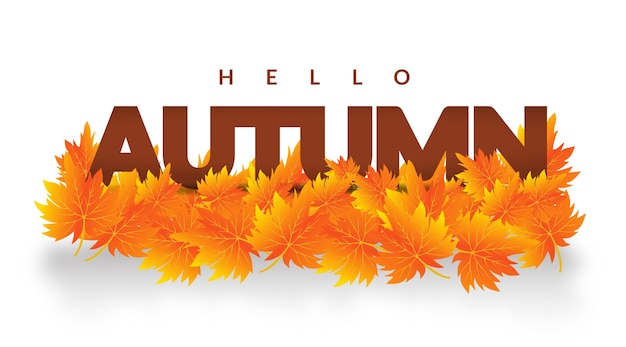Autum leaves hello autumn banner design