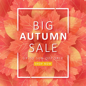 Autum sale background with leaves