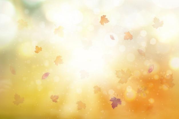가 추상 배경입니다. 밝은 배경에 떨어지는 빨강, 노랑, 오렌지, 갈색 단풍. 단풍 단풍의 단풍.