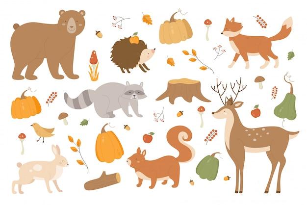 秋の動物イラストセット。漫画の森秋シーズンアライグマクマ鹿うさぎハリネズミキツネ文字、木の枝、秋のキノコ、白のカボチャのシーズンコレクション