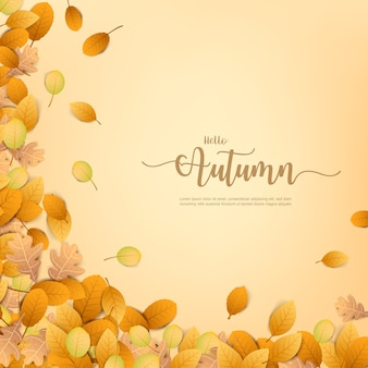 Autumn backgorund with dry leaf falling on background