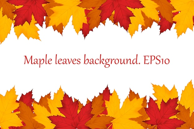 Autumn background of multi-colored maple leaves. vector illustration