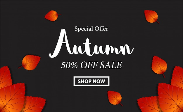 Autumn background sale banner with leaves