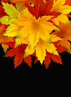 Autumn background template, with falling bunch of leaves, shopping sale