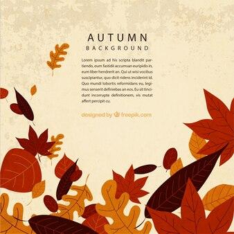 葉と秋の背景テンプレート