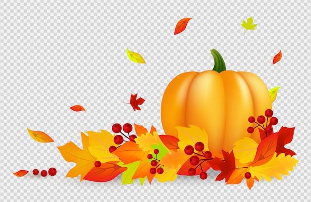 秋の背景。透明な背景にカボチャゴールドの赤い葉を持つ感謝祭バナー。落ち葉、収穫