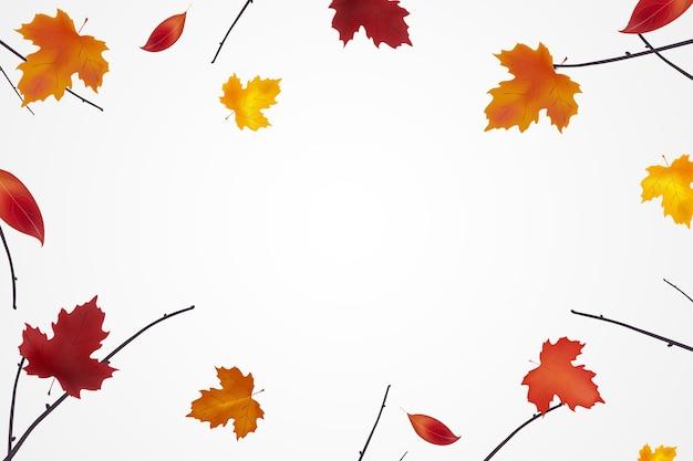 明るい色鮮やかな葉と秋の背景。