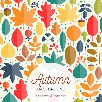 Autumn background with colorful leaves and acorns