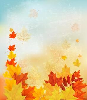 色とりどりの葉と秋の背景。学校のイラストに戻る