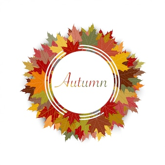 Autumn background with colourful maple leaves