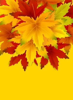 Autumn background with copy space, with falling bunch of leaves