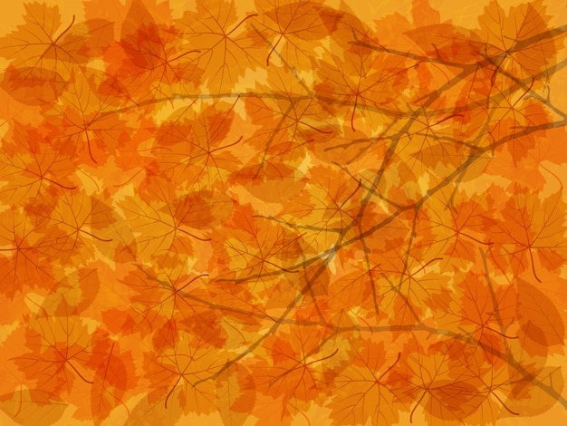 Autumn background with fallen leaves and branches.