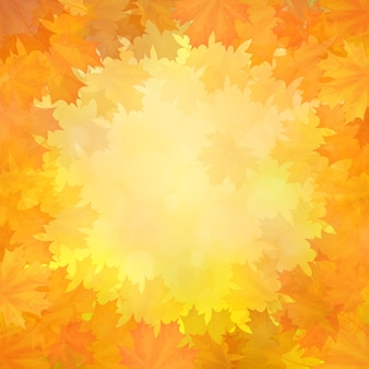 Autumn background with a frame of fallen maple leaves in a circle.