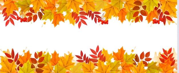 果物と葉と秋の背景