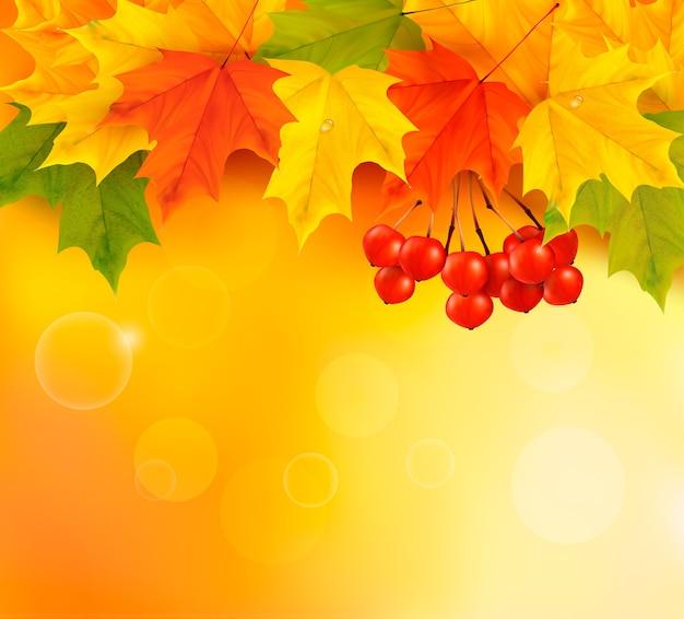 葉とナナカマドと秋の背景